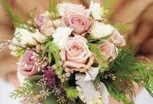 Boda // Wedding