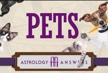 Pets / Anything cool about any and all pets. Virtually all of our staff here at Astrology Answers LOVE animals of any kind! You'll find all sorts of cute, fuzzy, not so fuzzy, big, small and in between pets to look at and read about here :)  / by AstrologyAnswers.com