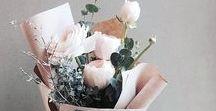 ・to blossom・