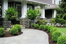 Back Yard & Garden Ideas / by Jenn Mulrooney