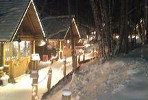 Furano Japan / North of Winter