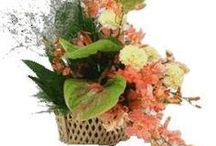 Basket / Vass / You can trust FEELINGS Florist to send all of your flower and gifts arrangements because we believe we are the experts in flowers and gifts delivery. Whatever you choose from our collection to send you can rest assure that FEELINGS Florist    will deliver the bouquet of flowers or gifts package. We guarantee fresh, beautiful floral flowers arrangements delivery. For More Details Please Visit : http://www.flowers4feelings.com/Mothers_Day_Flowers_to_Pune
