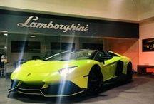 Lamborghini /\VENT/\DOR LP 720-4 Roadster / Lamborghini /\VENT/\DOR LP 720-4 Roadster 50° ANNIVERSARIO