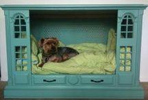 Pet Crafts / by Sara Richlie