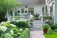 In the Garden / Pretty gardens