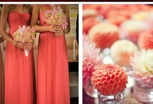 Wedding ideas / by Teresa Redeye