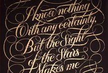 typo. calligraphy. lettering.