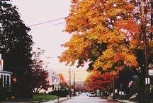 autumn mood / by Dasha Zilberbord