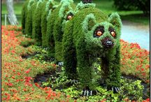 Outdoor / Gardens and nice ideas