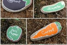 Allotment Ideas / Things to make my allotment pretty and productive.
