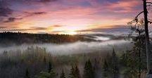 Besti Pictures from Nuuksio National Park / #nuuksio #nationalpark #outdoor #nature #finland #vihti #espoo #helsinkinaturecapital   http://finlandnaturally.com/nuuksionationalpark/  http://retkipaikka.fi/vapaa/nuuksio/