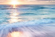Ocean dreams / Ocean dreams