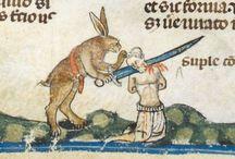 Rabbit - Horribilis lepusculus - straszny zając (królik)