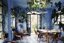 Blue sweet home