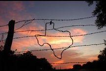 Texas, Y'all!