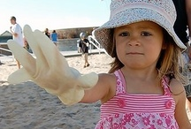 Beach Cleanups / Heal The Bay organizes beach cleanups through out LA county every month. These events are a super fun way to clean up your community and have fun at the beach!  / by Heal the Bay