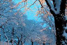 Hiver/Winter / de la neige et encore de la neige