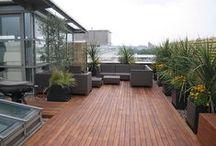 Tarasy (Terraces)