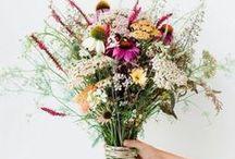 Lauren - Flowers