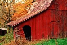 Barns / by Grace