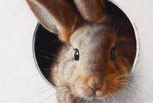 Pääsiäinen / Easter