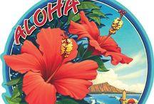 Hawaii / Hawaii 2016 visioning, planning, tripping...