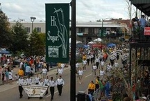 Southern Festivals of Food & Culture
