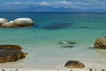 Things to do in Simon's Town