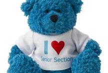 The Senior Section