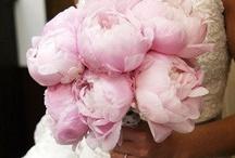 weddings / Dresses,shoes,bridal flowers