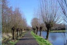 Welkom in Wilgenrijk / Echt, ontspannen, Hollands, mooi wonen.