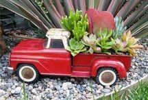 Crazy About Succulents / I love succulents. I love to plant them in containers. Using my son or grandson's toys, old baby shoes, cans, boxes, or kitchen ware. Whatever my mind can think of. I just have fun! / by Jo Shewmaker