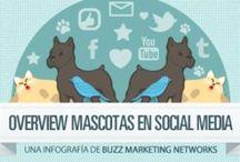 Dogs & Infographics / Infografias y otras cosas relacionadas con nuestras mascotas