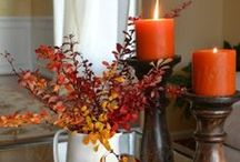 Thanksgiving / by Bella Grey