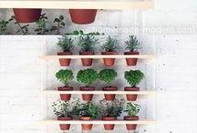 Gardenisch / Tuin inspiratie