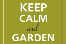 Garden Inspiration / Gardening ideas and tricks, patio inspiration, plants and critters