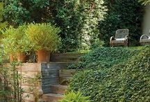 Landscape & Gardening / Beautiful and thoughtful landscaping increases your home value!