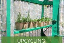Upcycling - Gewächshaus aus alten Flaschen oder Fenstern / Ein Gewächshaus für den Garten könnt ihr aus einfachen, alten Materialien bauen. Dazu braucht ihr nur viele Plastikflaschen oder ein paar alte Fenster. Der Aufbau ist ein DIY-Projekt für die ganze Familie!