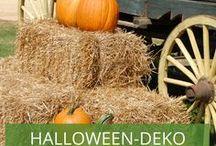 Halloween-Deko für den Garten / Sie suchen noch die passende Deko für Ihr Halloween-Fest oder wollen einfach nur ein wenig mit Grusel dekorieren? Lassen Sie sich hier von vielen schaurigen Deko-Ideen inspirieren!