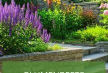 Blumenbeete / Sie dürfen in keinem Garten fehlen: Blumen und Zierpflanzen! Wir zeigen Ihnen die schönsten Inspirationen für Ihr Blumenbeet, Staudenbeet oder Schattenbeet.