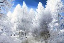 Winter snow / by Jigen 1