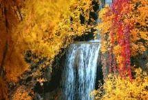 Autumn color / by Jigen 1