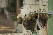 Because I like it / A pot-pourri of thinghs I like / by Giuseppina Mabilia