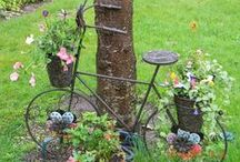 Yard & Garden  / Neat ideas for outside the home. Gardening, etc.