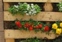 my fantastic garden!!!!!!!!!!!!!!