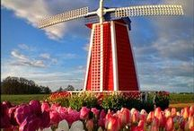 Netherlands (Holland) | hoppa / Fields of tulips, beautiful rivers and canals, Windmills full of character, clogs, and... Amsterdam. It's all here!