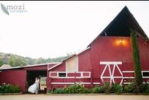 Barn Weddings / by A Forever After Wedding Rev. Patricia Borsum