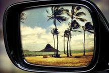for love of hawaii / by elizabeth midwikis