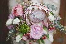 Blooming Beautiful / My wedding flowers!