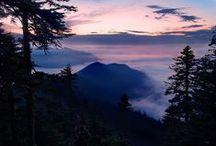 Hikes - Mount Rainier National Park, WA